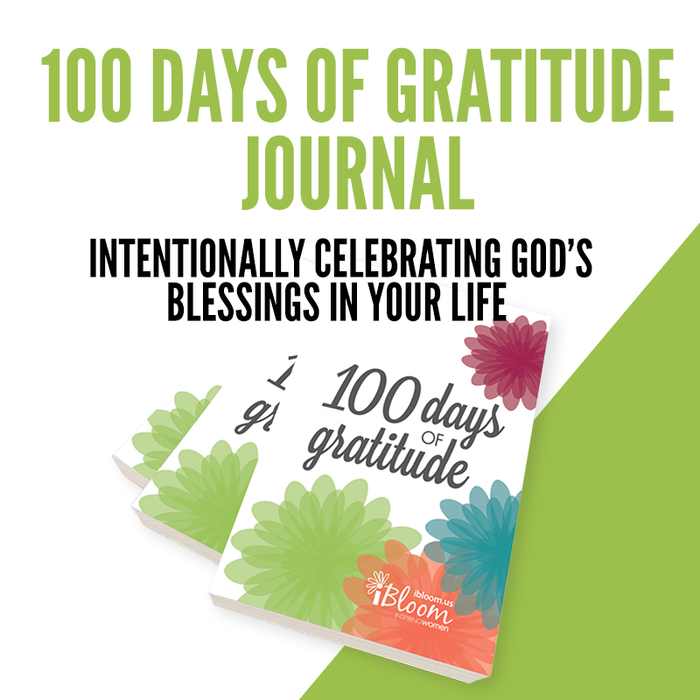 100 Days of Gratitude Journal
