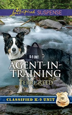 agent-in-training